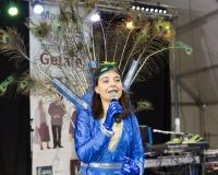 Carnaval-de-Mayores-2018_782