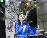 Carnaval-de-Mayores-2018_784