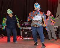 Carnaval-de-Mayores-2019_932