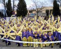 Desfile-de-Murgas-Carnaval-de-Getafe-2003_042