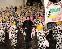 Desfile-de-Murgas-Carnaval-2006_048