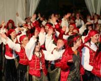 Desfile-de-Murgas-Carnaval-2006_072