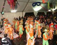 Desfile-de-Murgas-Carnaval-2006_134