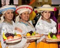Desfile-de-Murgas-Carnaval-2012_158