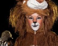 Desfile-de-Murgas-Carnaval-2012_166