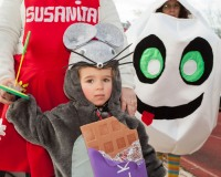 Desfile-de-Murgas-Carnaval-2013_268