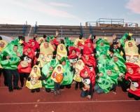Desfile-de-Murgas-Carnaval-2013_296