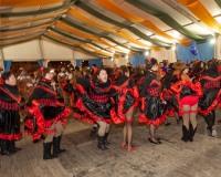 Desfile-de-Murgas-Carnaval-2013_328