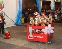 Desfile-de-Murgas-Carnaval-2013_349