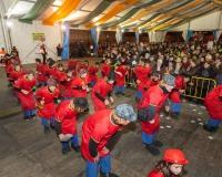 Desfile-de-Murgas-Carnaval-2013_352