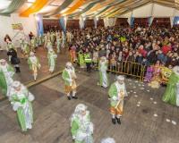 Desfile-de-Murgas-Carnaval-2013_354
