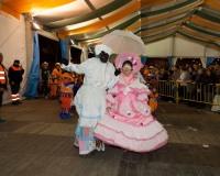 Desfile-de-Murgas-Carnaval-2013_359