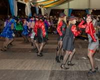 Desfile-de-Murgas-Carnaval-2013_363