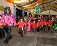 Desfile-de-Murgas-Carnaval-2013_370