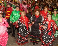 Desfile-de-Murgas-Carnaval-2013_371