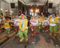 Desfile-de-Murgas-Carnaval-2013_403