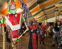 Desfile-de-Murgas-Carnaval-2013_410