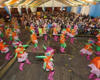 Desfile-de-Murgas-Carnaval-2013_412