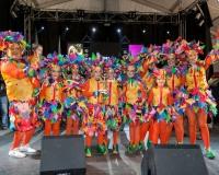 Desfile-de-Murgas-Carnaval-2013_442