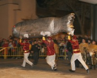 Entierro-de-la-Sardina-Carnaval-2005_036
