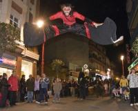 Entierro-de-la-Sardina-Carnaval-2008_290