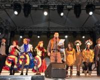 Pregon-de-Carnaval-2012__028